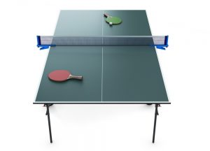 How Much Does a Ping Pong Table Cost